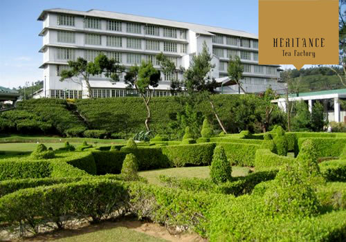 Tea-factory-hotel-1